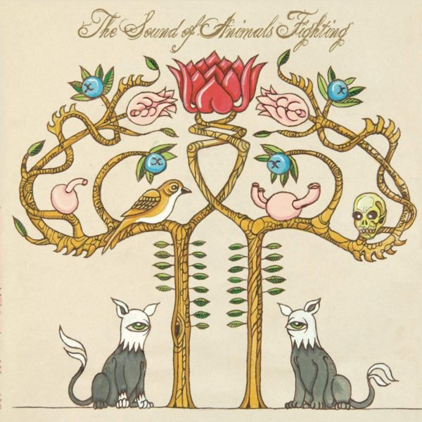 SOUND OF ANIMALS FIGHTING - TIGER AND THE DUKE