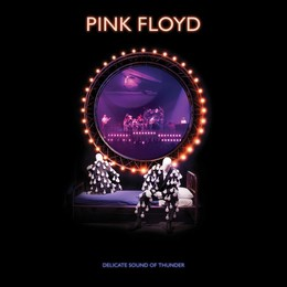 PINK FLOYD – DELICATE SOUND OF THUNDER Restored Re-Edited Remixed BRD